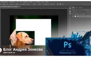 Как в фотошопе уменьшить размер фотографии. Как уменьшать фотографии в фотошопе